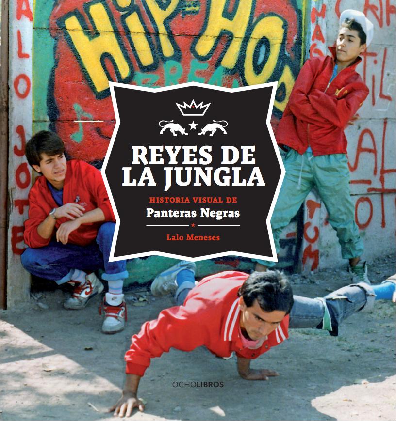 Reyes de la jungla. Historia visual de Panteras Negras