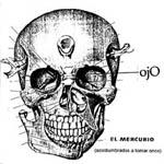 El Mercurio (acostumbrados a tomar once)