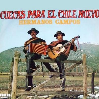 Cuecas para el Chile nuevo