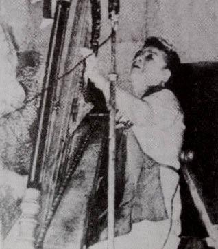 Petronila Orellana