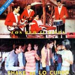 Shake en Lo Curro