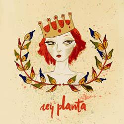 Rey planta EP